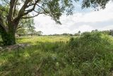 Land Frontage on Camellia Behind Parc Lafayette! Lot 3