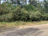Commercial Land for Sale